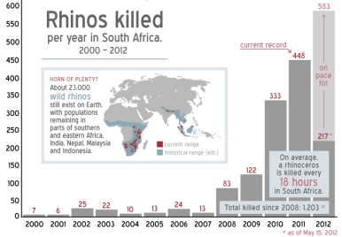 Adapted from Infographic- Understanding the rhino wars
